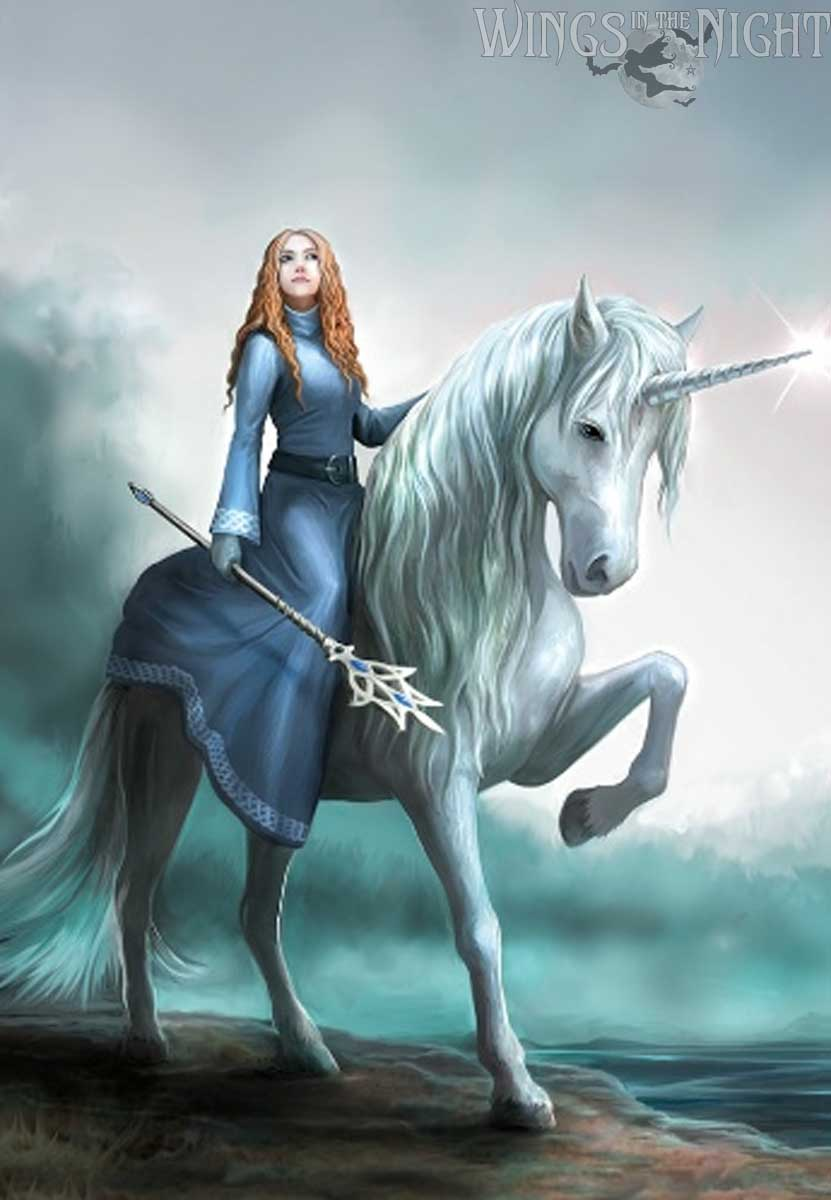 Anne Stokes Journey's Start Unicorn Greeting Card | Gothic Home & Gifts