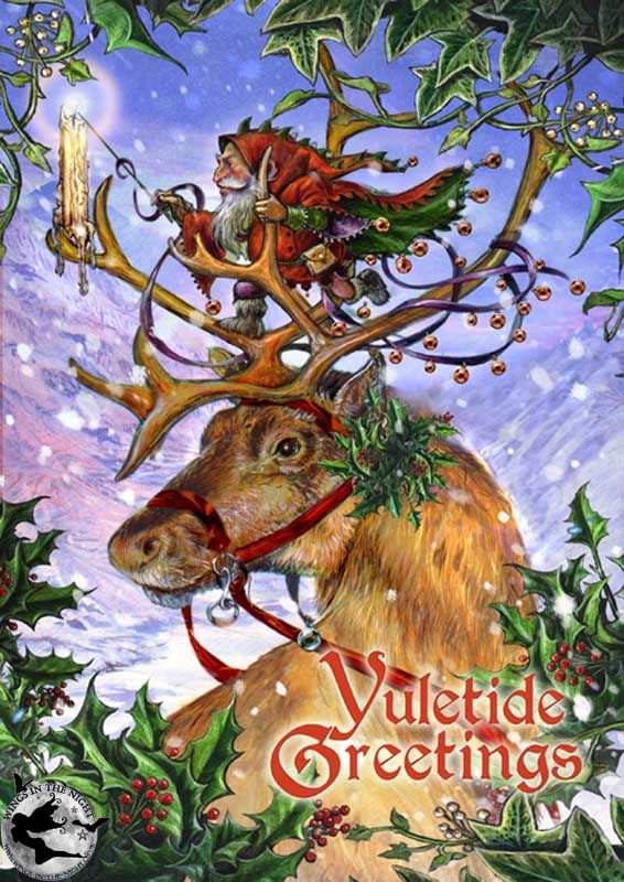 BRIAR Guided by the Northern Lights Yule Greeting Card