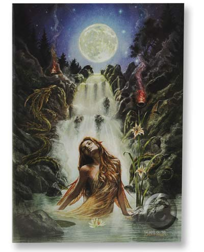 Briar Mythology Moon Falls Fairy Greeting Card